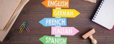 Fakten zum Sprachenlernen, Teil 6: Fazit