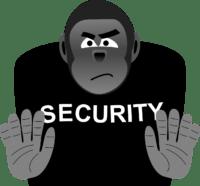 Englisch_nach_Mass_Security