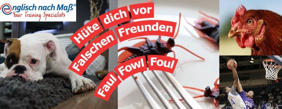 Hüte dich vor Falschen Freunden Faul Fowl Foul