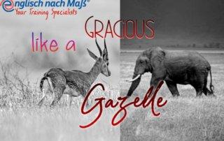 Gazelle und Elefant in s/w Text: Gracious like a Gazelle